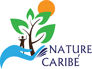 Nature Caribe