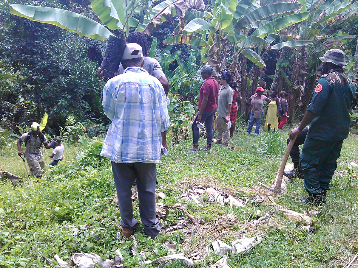 JCDT - Facilitating Community Capacity Building e.g. Agroforestry Skills Training